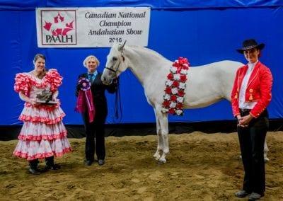 Duquesa 2016 National Champion Mare, Amateur to Handle