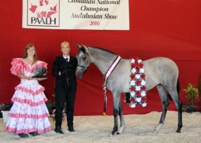VMF Coqueta Elegante 2010 Champion