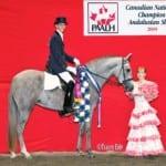 Estampa MA 2012 Champion