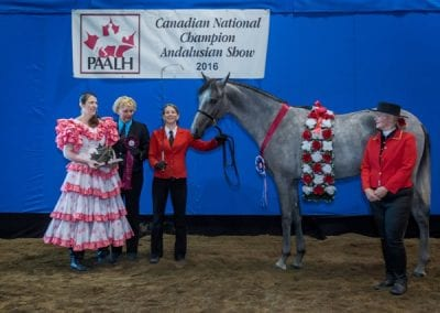 2016 National Champion Colt 1 year and under