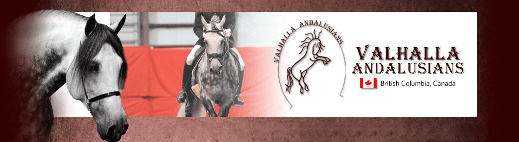 Valhalla Andalusians, British Columbia, Canada - Contact us